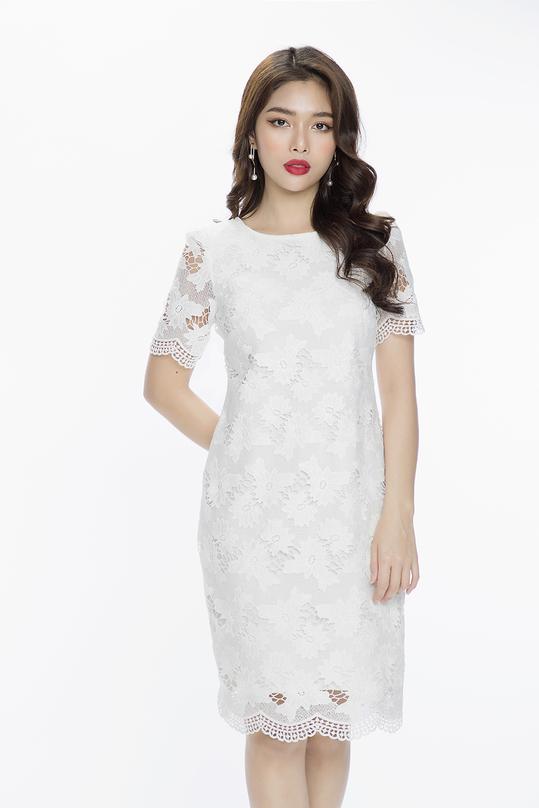 Đầm ren trắng dáng suông