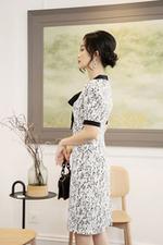 Đầm suông hoa viền đen cổ thắt nơ