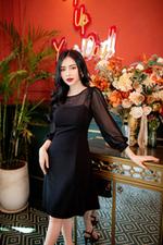 Đầm đen dáng xòe tay dài phối voan